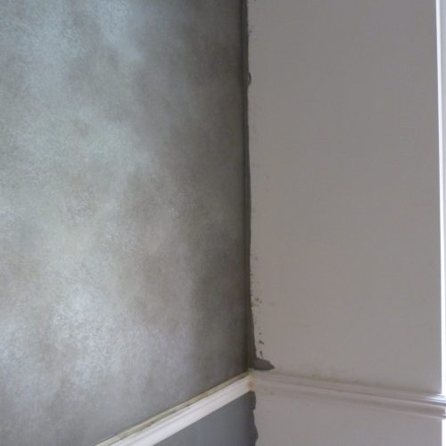 "Silver ""Milky Way"" Specialist Wall Finish"